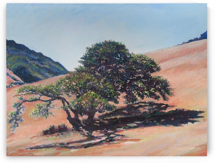 Tree with Dark Shadow by Rick Bayers