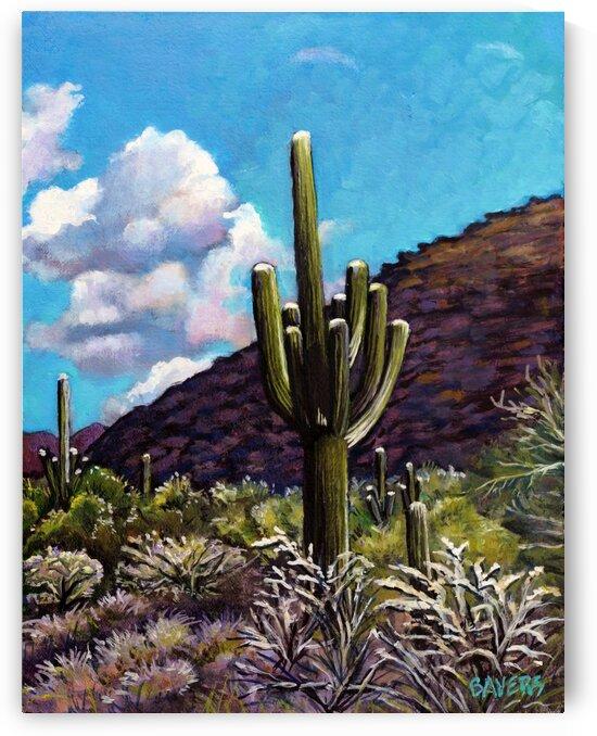 Arizona Cactus by Rick Bayers