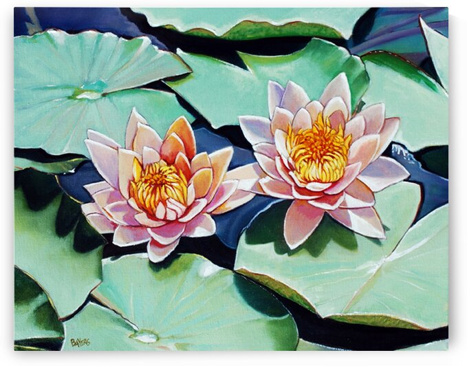 Two Pink Flowers on Water Lilies by Rick Bayers