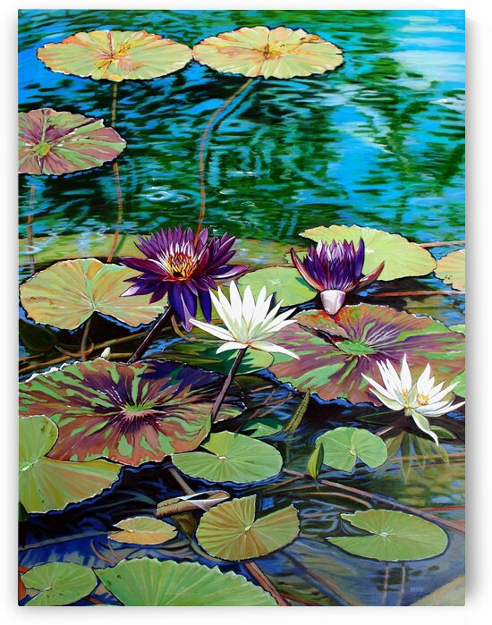 Water Lilies with Purple Flowers by Rick Bayers