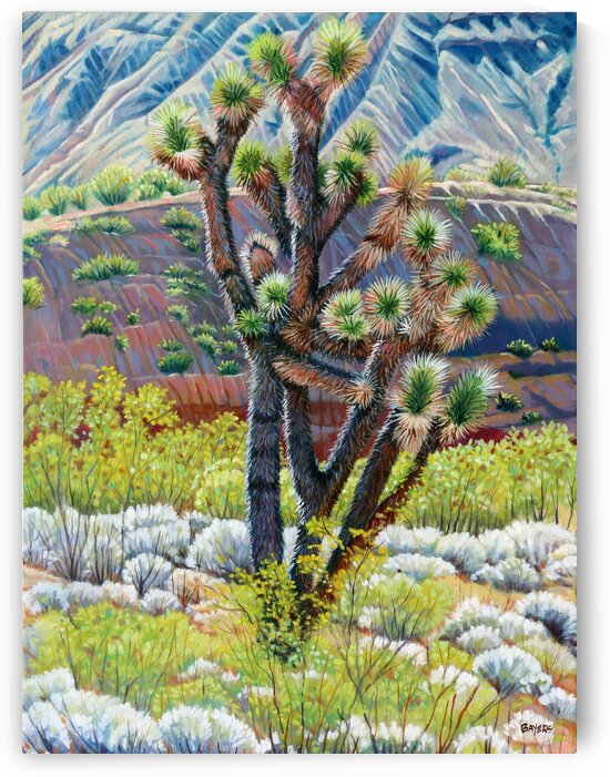 Cactus and Sage Brush by Rick Bayers