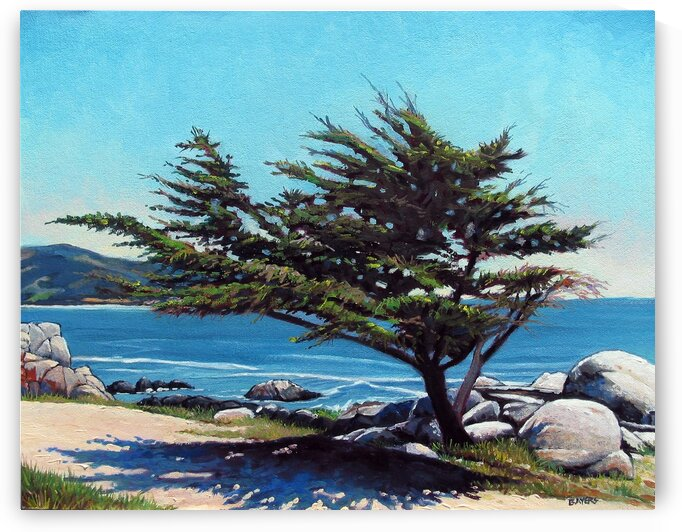 Tree with Shadow at Pebble Beach by Rick Bayers