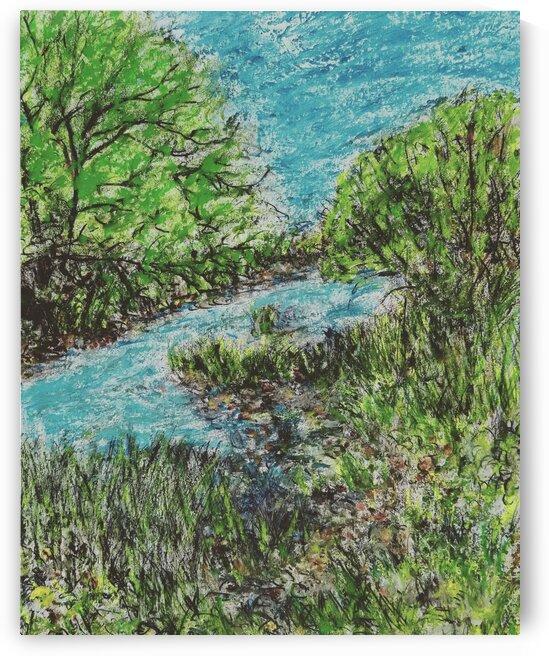 Oshawa Creek by djjf