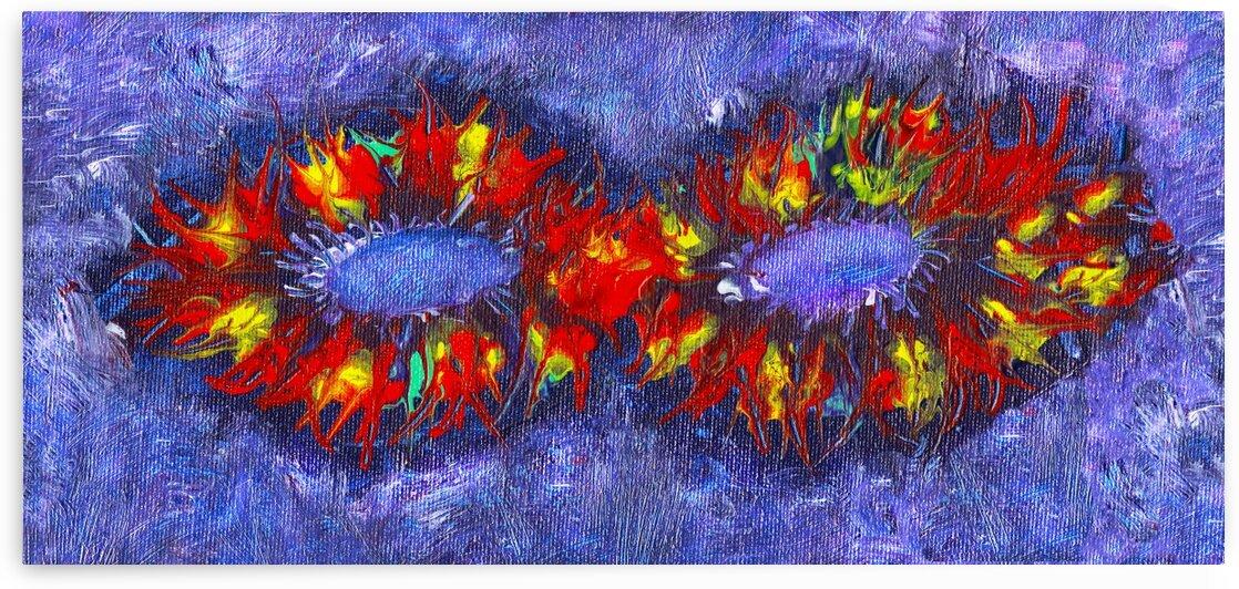 Infinity by Pamela Soto