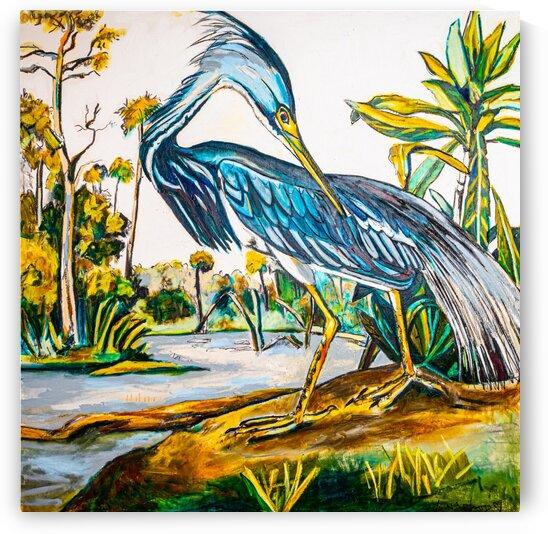 Square Louisiana Blue Heron  by Caroline Youngblood