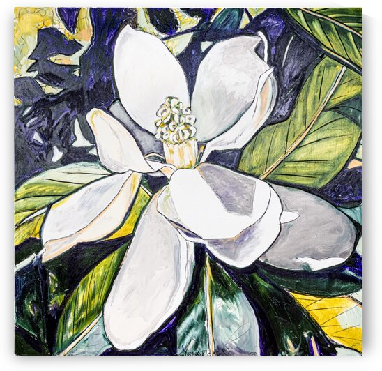 Large Purple and Gold Louisiana Magnolia by Caroline Youngblood