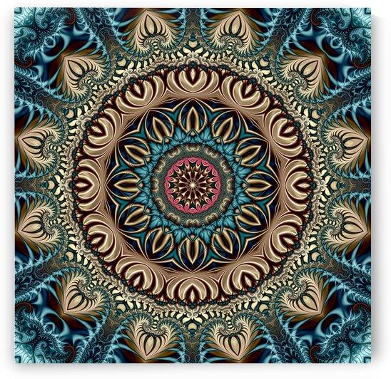 Mushroom Mandala by Deometry