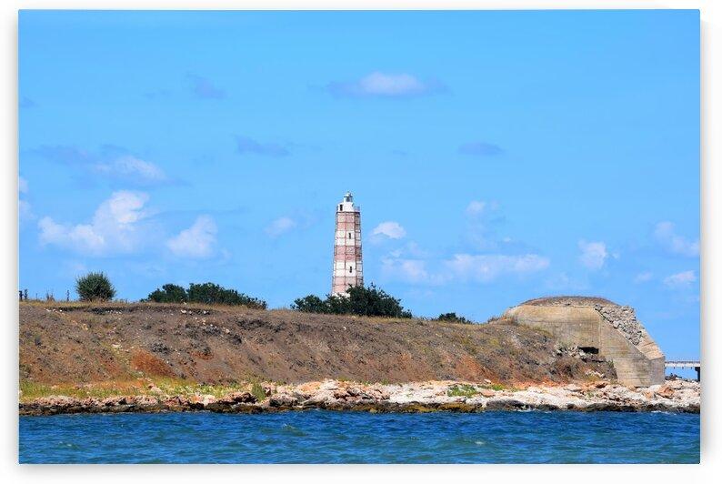 Lighthouse Landscape by Kikkia Jackson