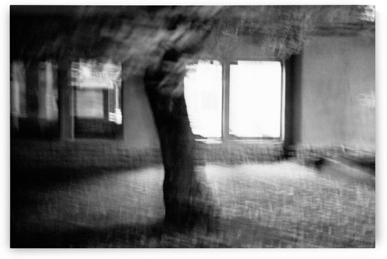 Light from a window by Olivier De Rycke