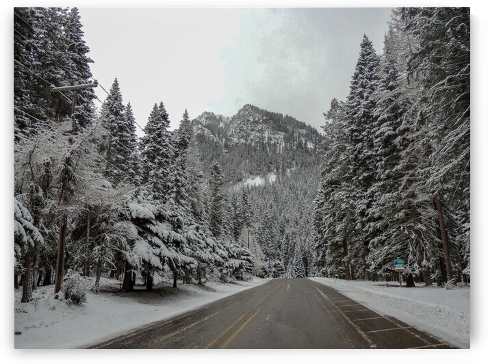 Oregon Winter Scene by Dan Edel