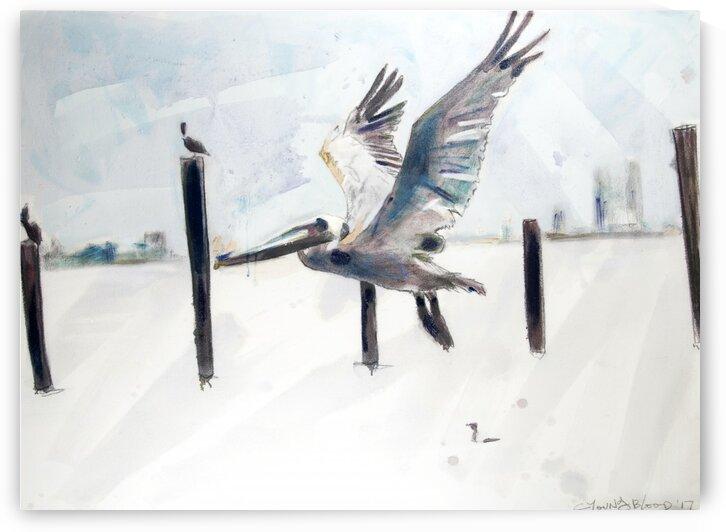 Flying Louisiana Pelican by Caroline Youngblood