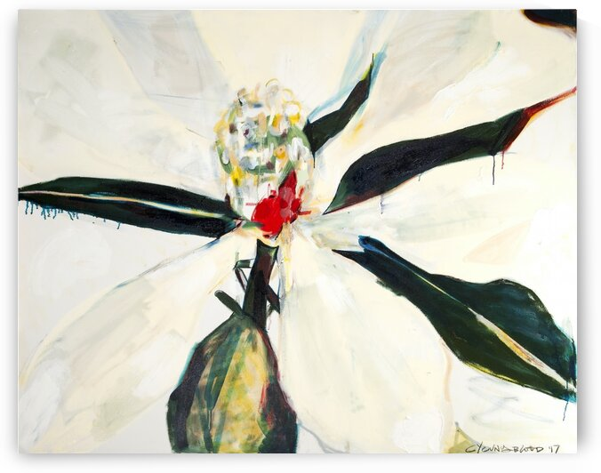 Louisiana Magnolia with Red Center by Caroline Youngblood
