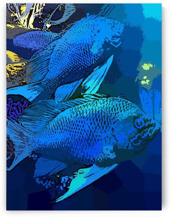 Splash of Ocean Life by Nisuris Art