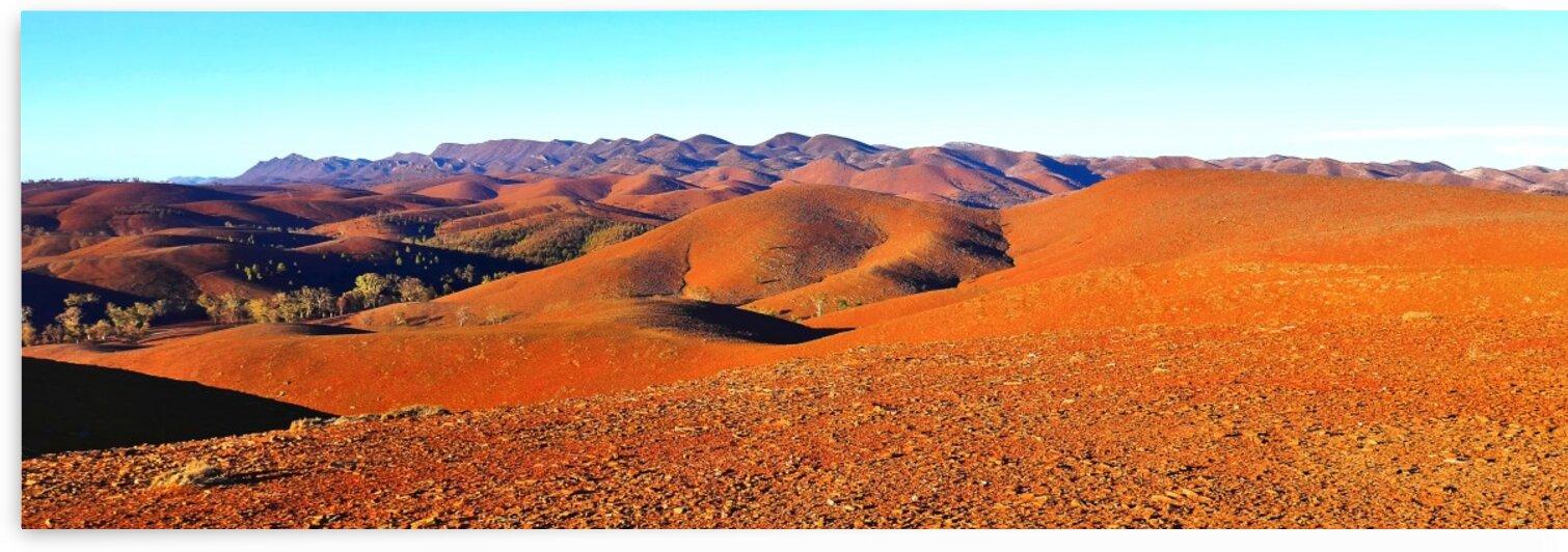 Golden Hour on the Flinders Ranges by Lexa Harpell