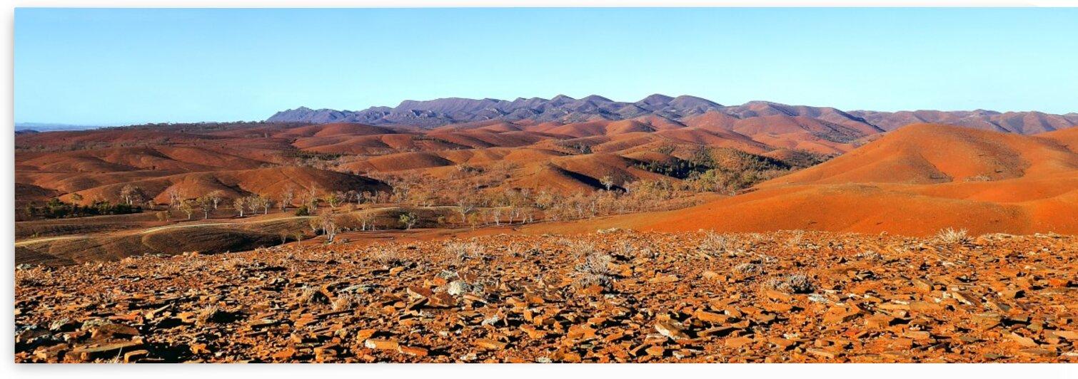 Colour Folds - Flinders Ranges by Lexa Harpell