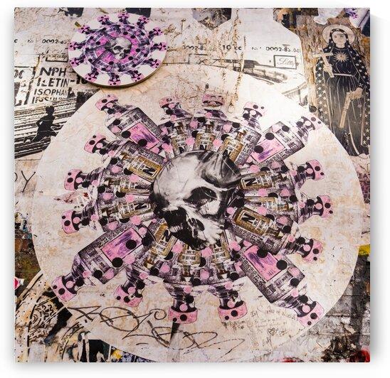 Skull by Javier Roa