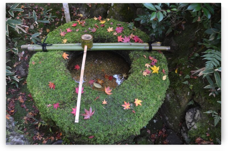 Koto-in KyotoDSC_0072 by Onjin com