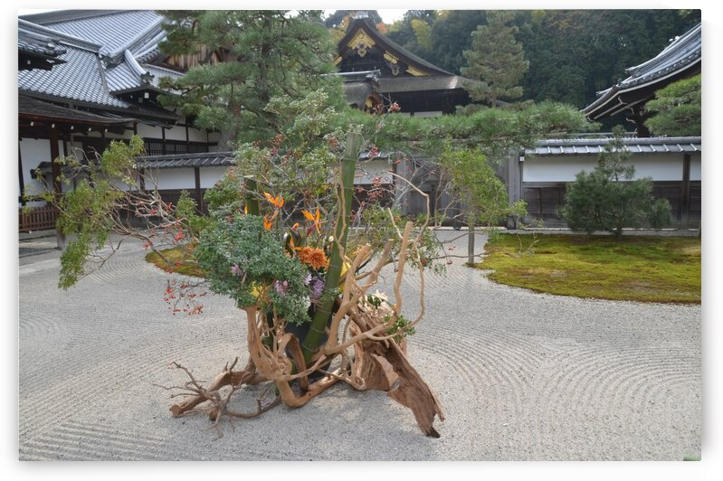 Sennyu-ji KyotoDSC_0578 by Onjin com
