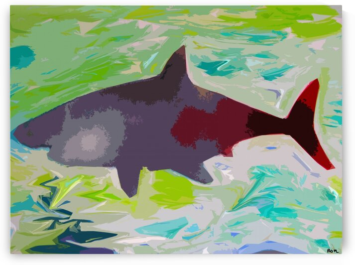SHARK by Robert Owen Margetts