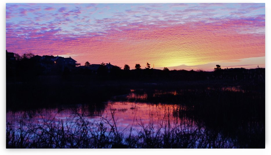 Good Harbor Sunrise by Sue Bonior