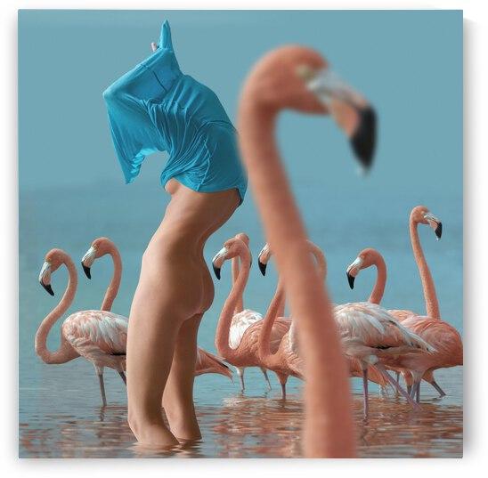 Girl with Flamingo by Elena Vizerskaya