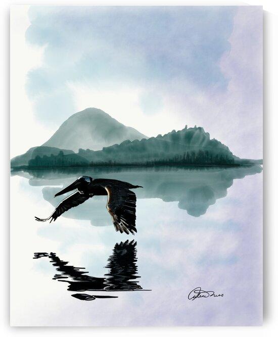 Pelican by Arlene Ness