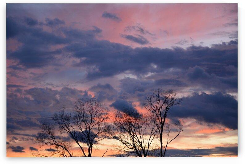 Sunset Photograph by Katherine Lindsey Photography