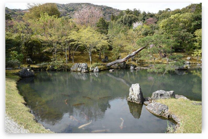 Tenryu-ji KyotoDSC_1277 by Onjin com
