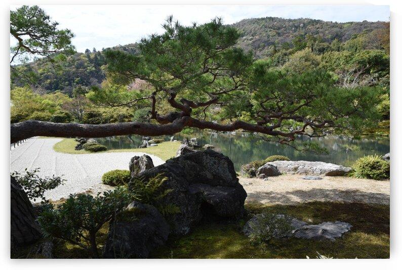 Tenryu-ji KyotoDSC_1268 by Onjin com