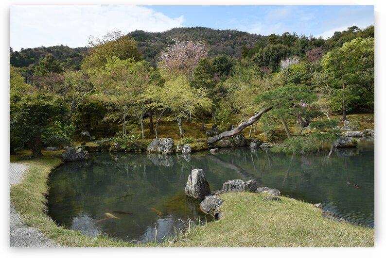 Tenryu-ji KyotoDSC_1193 by Onjin com