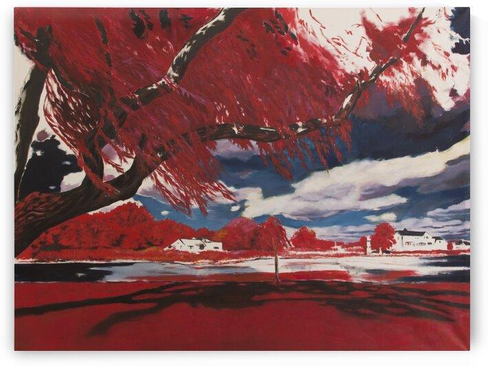 Red Landscape by Judit Mráz