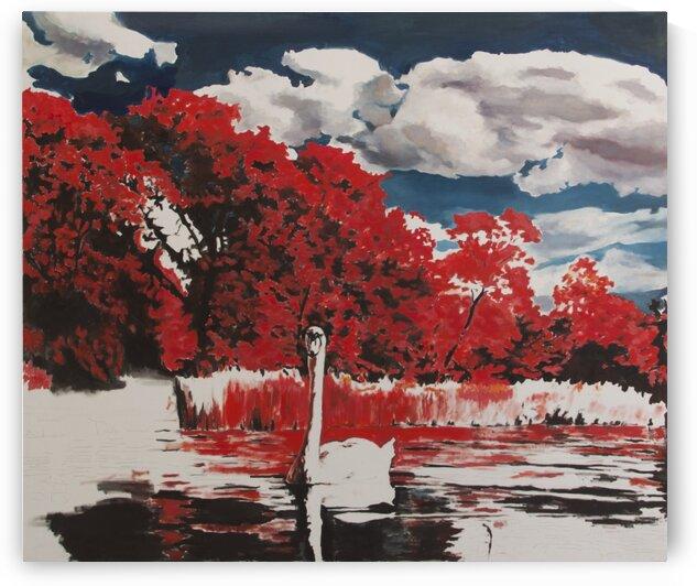 Swan by Judit Mráz