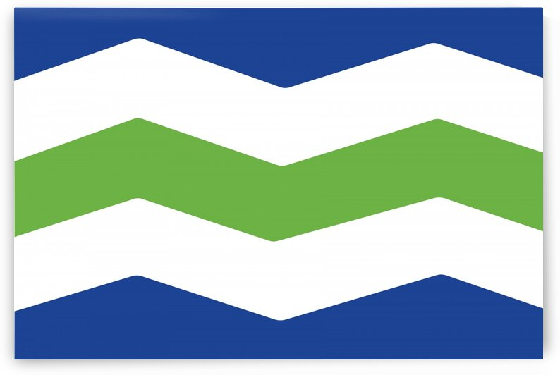 Burlington Vermont Flag by Fun With Flags