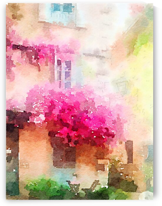 Bougainvillea in Antibes by Kath Sapeha