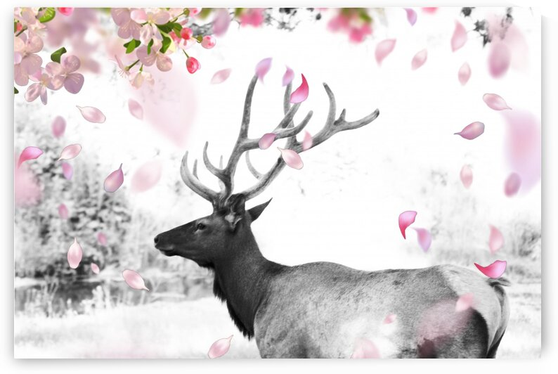 ELKBLACKANDWHITEWITHPINKFLOWEROVERLAY by Kristy May Photography