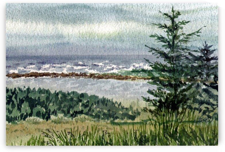 Pacific Ocean Shore by Irina Sztukowski