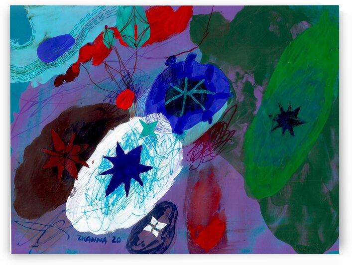 Stargazing by Zhanna Shomakhova