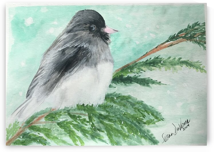 Fluffy  by Susan DaVonne