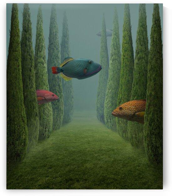 tranquility by Elena Vizerskaya