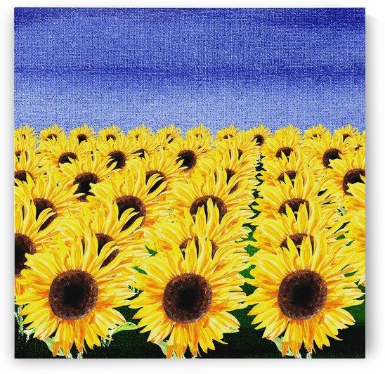 Sunflowers Field by Irina Sztukowski