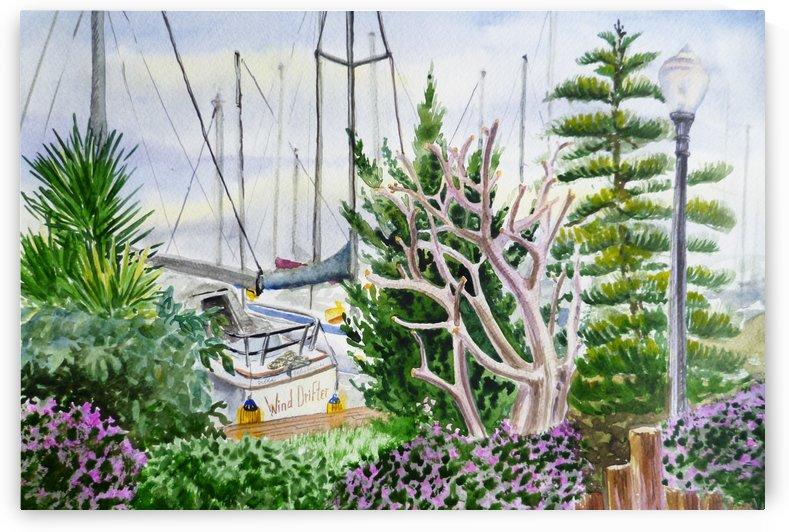 Wind Drifter At The Marina  by Irina Sztukowski