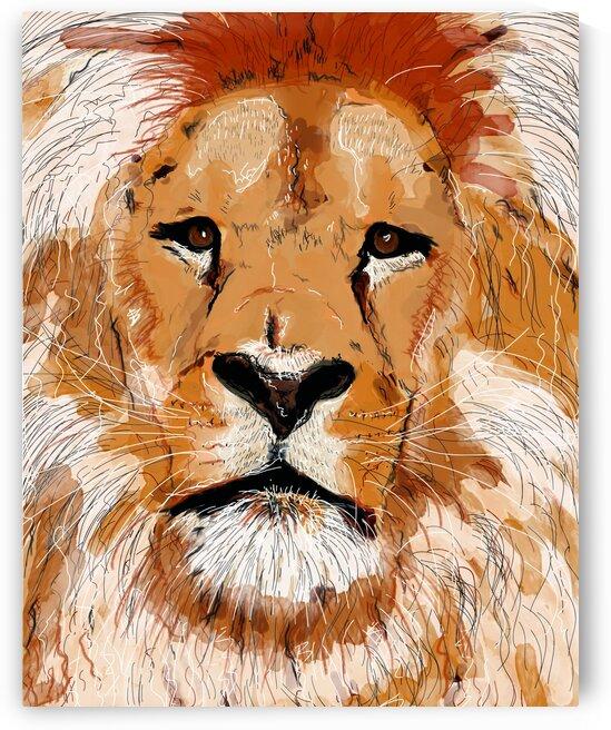 Lion by Julie St Pierre