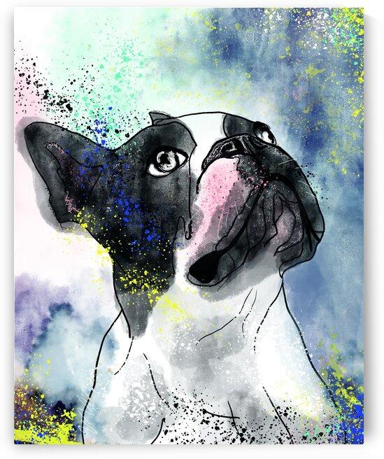 bulldog avec du bleu by Julie St Pierre
