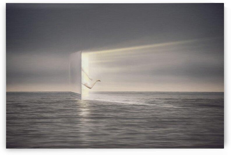 Portal by Elena Vizerskaya