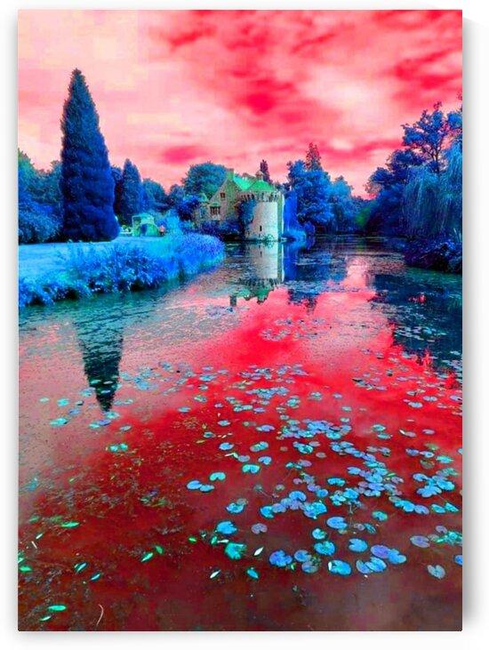 Pink Water Lily Pond by LeGustavienne