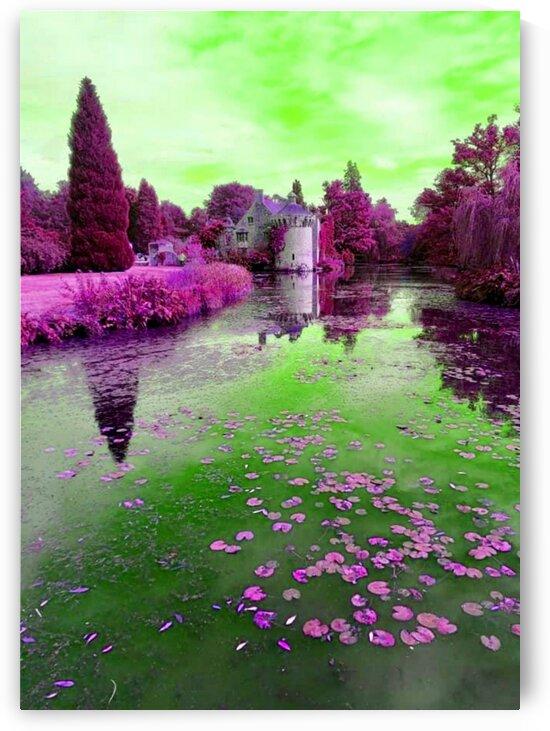 Photograph French Lily Pond Scene by LeGustavienne