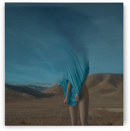 fade out by Elena Vizerskaya