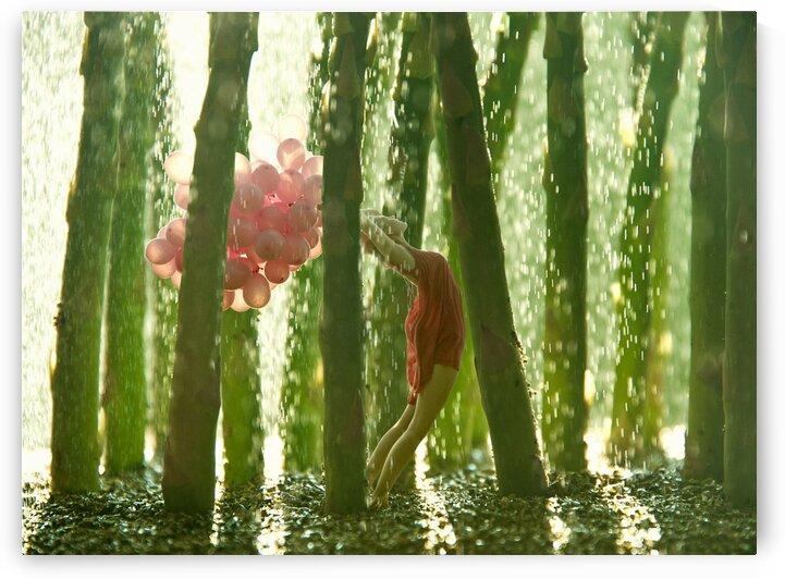 Asparagus Rainy forest by Elena Vizerskaya
