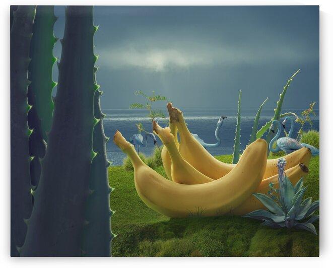 Giant Bananas by Elena Vizerskaya