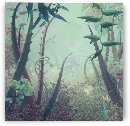 foggy Aloe forest by Elena Vizerskaya